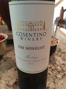 cosentino the novelist